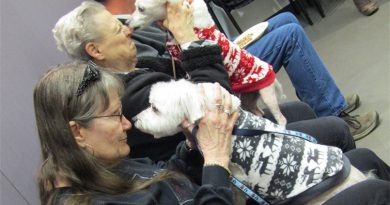 alzheimers-support-class-dog