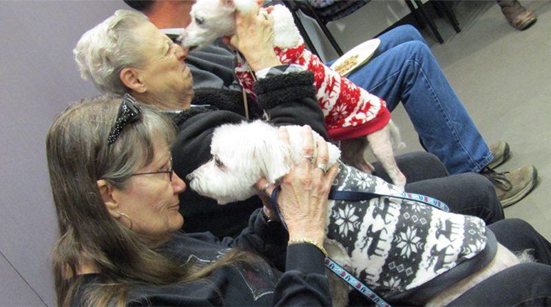 alzheimers-support-class-dog
