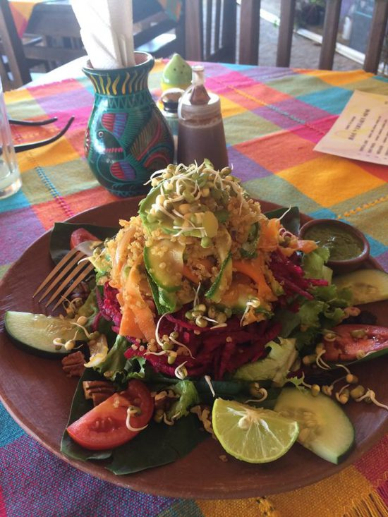 Alzheimer's Caregiver - Colorful Meal