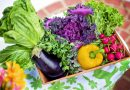Can a Healthy Diet Reduce the Risk of Alzheimer's Disease?