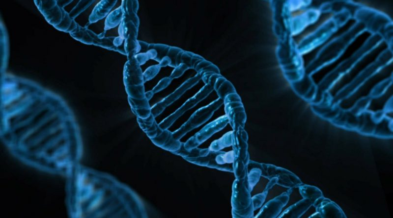 Genetic Testing and Alzheimer's